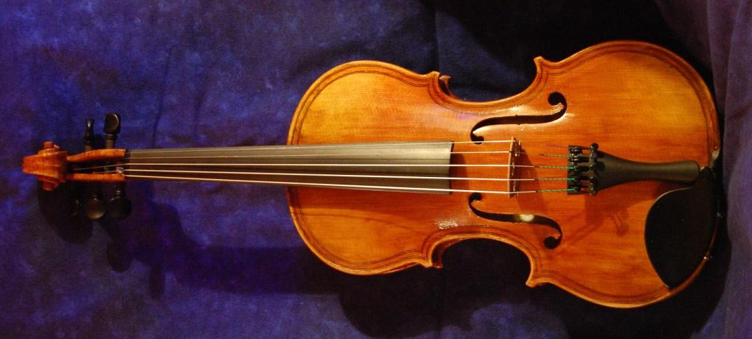 5-streing fiddle